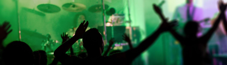 Firmafest, Konfirmation, Julefrokost, Polterabend, live musik, DJ